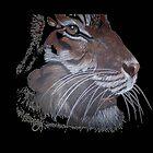 Tiger by Diane Giusa