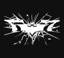 Batman The Dark Knight Rises by haihajam