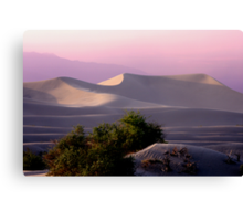 Sunset Dune Canvas Print
