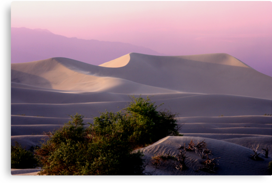 Sunset Dune by Varinia   - Globalphotos
