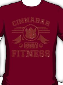 Cinnabar City Fitness T-Shirt