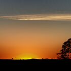 Good Morning Outback by Tainia Finlay