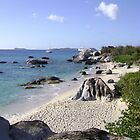 Little Trunk Bay BVI by mcbuca02