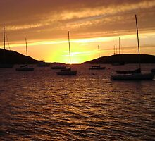 Sunset at The Bitter End Yacht Club, British Virgin Islands #2 by mcbuca02