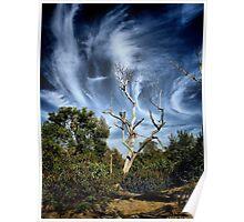 Windswept Skies Poster