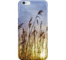 Doffcocker Reeds iPhone Case/Skin