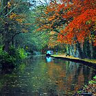 TOWPATH by Karen Harding