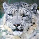 Snow Leopard by Selina Tour