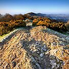 The Malvern Hills : Winter Morning by Angie Latham