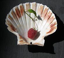 Raspberry coquille by rustumlongpig