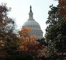 US Capitol by shooterrn