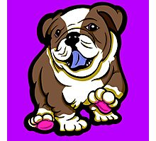 Happy Bulldog Puppy Brown  Photographic Print