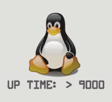 Linux - Uptime Over 9000 by brzt