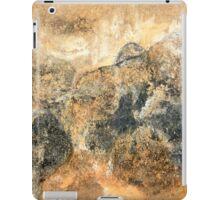 Before Sunset iPad Case/Skin
