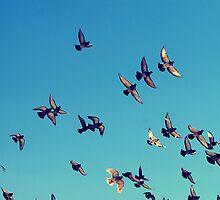 Flight by Janet Leadbeater