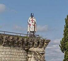 Guarding the Chateau de Chinon, Brittany, France by Elaine Teague