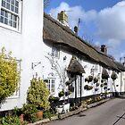 Doreens Home ........Devon UK by lynn carter