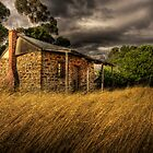 Old cottage  by Peter Hodgson
