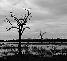 Lake Fyans in Black & White by gigglemonster