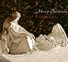Manger Scene Christmas Card by Ken Fortie