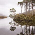 Loch Eilt reflections by Christopher Cullen