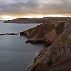 Coastline, Devon by David Clewer