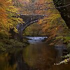 autumn bridge  by David Clewer