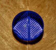 ...the blue drop... by Geoffrey Dunn