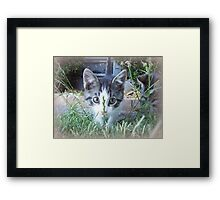 Whats that in my way Framed Print