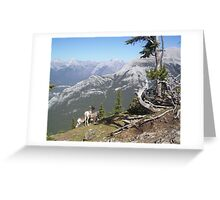 Lonely Goatherd Greeting Card