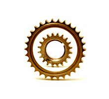 gears 4 Photographic Print