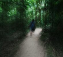 Lost in Mossman Gorge - Part 3 by Erin Lyall