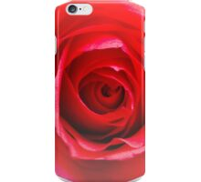 Red rose Close up 2 iPhone Case/Skin