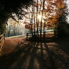 Early Autumn Light by Geoff Carpenter