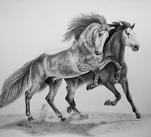 """""""Spanish Brothers"""" PRE stallions by SD 2010 Photography & Equine Art Creations"""