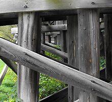 Under The Train Bridge by Tracy Faught