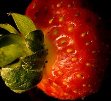 Strawberry macro by mausue