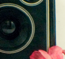 Vintage Kodak Brownie camera with pink apple blossom flowers Sticker
