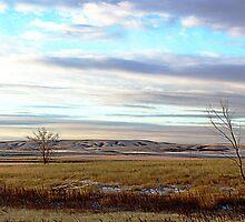 The Prairies (1) by George Cousins