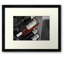 The Elixir Of Life Framed Print