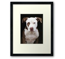 The Beautiful Dottie Framed Print