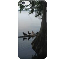 family of ducks on the pond iPhone Case/Skin