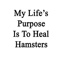 My Life's Purpose Is To Heal Hamsters  Photographic Print