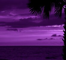 Purple Evening by Sandy Keeton