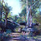 Autumn - Flinders Ranges by Lynda Robinson