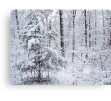 Snowy Forest Wonderland Canvas Print