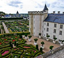 Villandry Castle - Loire Valley - France 3 by Alison Cornford-Matheson