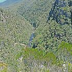 Alum Cliffs Gorge, Alum Cliffs, Mole Creek, Tasmania by Margaret  Hyde