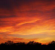 Tuesday - Sunset by Simon Pattinson