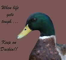 Keep on Duckin by CardLady